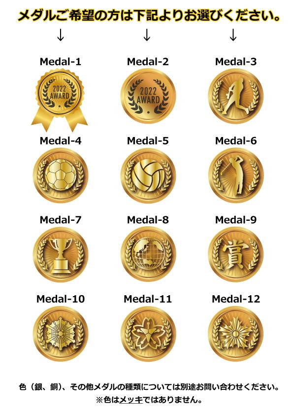 メダル一覧