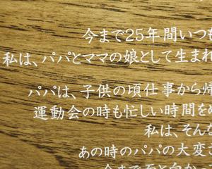 木の楯、木の楯(盾)